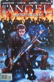 Angel After The Fall #10 Cover B (2008) IDW Publishing comic book
